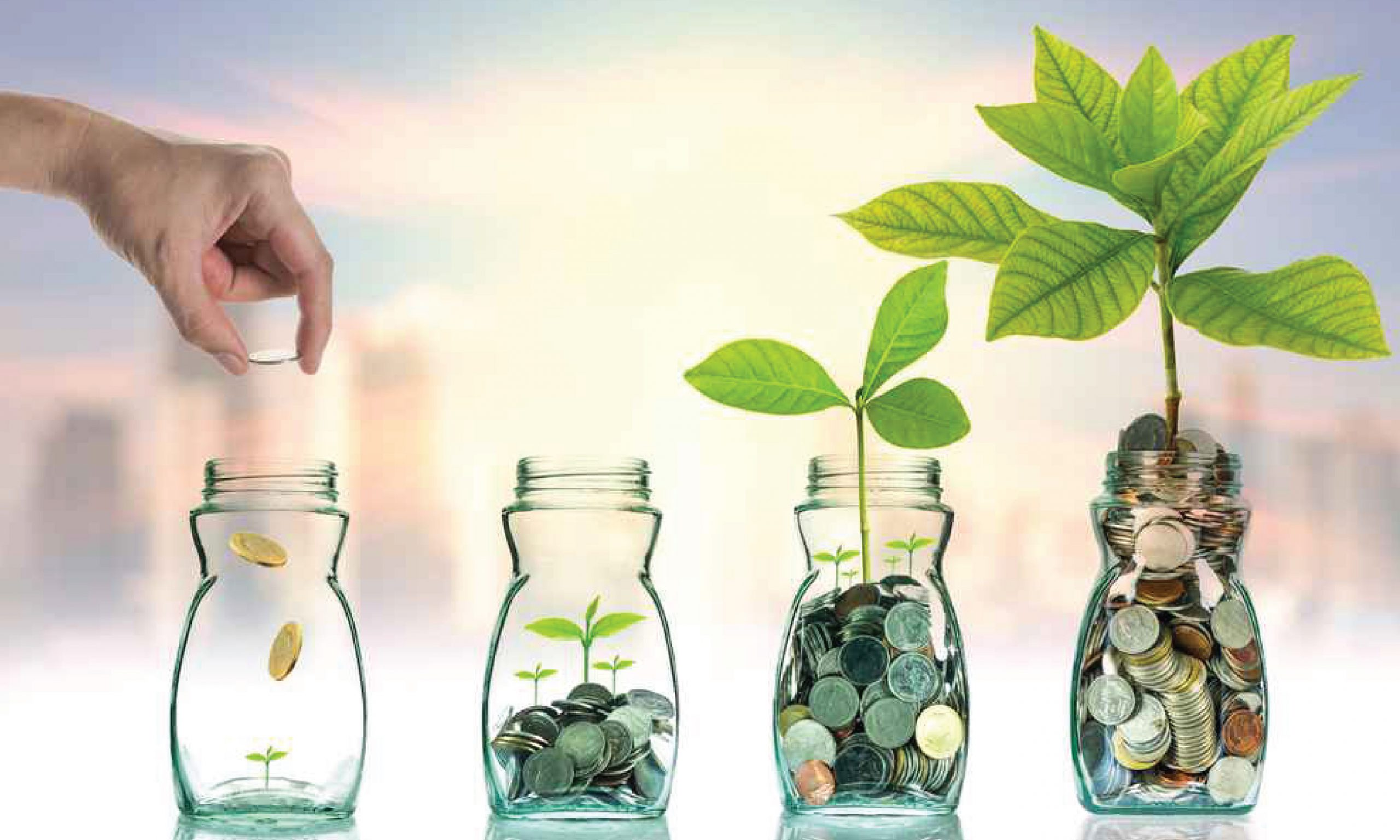invest mutual funds